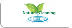 naturalcleaning image